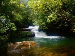 西表島で秘境体験を! カヌー&滝つぼツアーレポート