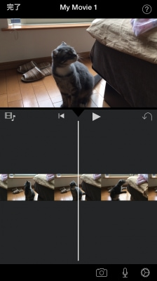 動画の編集画面が開いたら、「完了」をタップ