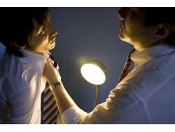 局部切断事件で考えた。配偶者の不倫発覚、どうするか