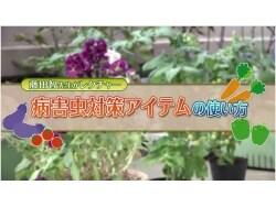 家庭菜園 病害虫対策アイテムの使い方【動画】