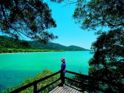 オーストラリアが熱い!ケアンズのおすすめ観光ツアー
