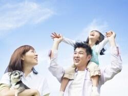 2016年5月優待、個人投資家注目の20万円株はコレ!