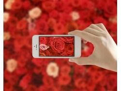 アプリを使ってプロっぽい画像を撮影&作成する方法