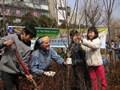 木を植え続ける男。日本列島北上中!