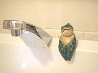 節約手間なし、ピカピカ朝1分のトイレ掃除