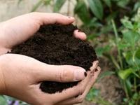 家庭菜園に使う土 〜 その種類と使用法