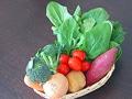 野菜の選び方・保存方法・下ごしらえ一覧表