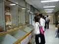 シリラート死体博物館/バンコク