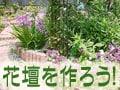 花壇の作り方:種類や下準備、栽培計画を立てよう