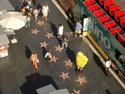 絶対行きたい!ロサンゼルスの有名観光地リスト