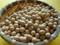 【カロリー表】豆類(豆、豆腐、納豆など)