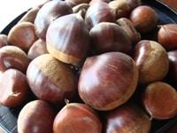 【カロリー表】種実類(ナッツ、木の実)