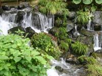 京都を楽しむ京の水物語