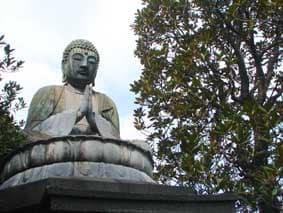 谷中の大仏と天王寺の五重塔