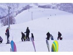 スキー・スノーボードの事故と損害賠償