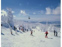 スキー保険・スノーボード保険は1日契約可?