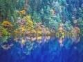 九寨溝:万華鏡のような色彩で魅せる中国の水景王