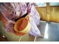旅館・温泉宿の浴衣を美しく着るポイント