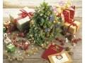 クリスマスカードを海外に送る時期はいつからいつまで?