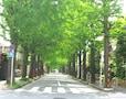 理由は江戸時代に。金持ちはナゼ高いところに住む?