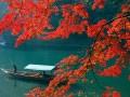 京都の紅葉名所ランキングBEST5&京都のおすすめ温泉