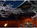 都内の穴場夜桜スポット・靖国神社「奉納夜桜能」