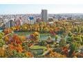 札幌の紅葉スポット!市民が教えるおすすめ6選&紅葉時期