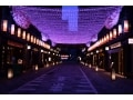 日本橋桜フェスティバル2016