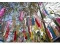 七夕飾りの種類・意味…短冊願い事NGや七夕楽しむ笹飾り豆知識