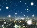 冬の星座を楽しもう!特徴と見つけ方