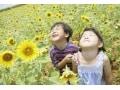 感受性が強い子供の特徴・悩み・育て方…ギフテッドとは