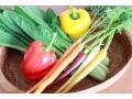子どもに野菜を食べてもらうための3つの工夫