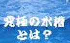 バランスドアクアリウム、究極の水槽とは?