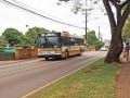 ハワイを走る路線バス「ザ・バス」の乗り方・料金