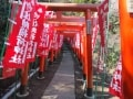 鎌倉観光モデルコース 人気名所7ヶ所を一日で歩く!