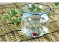 恋愛初心者が安全に恋愛結婚をするなら「金魚鉢」へ?