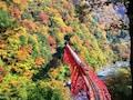 北陸新幹線で行きたい、黒部・立山の紅葉スポット