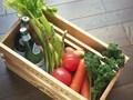 食料品や日用雑貨を「ネットショッピング」でお得に上手に買う方法