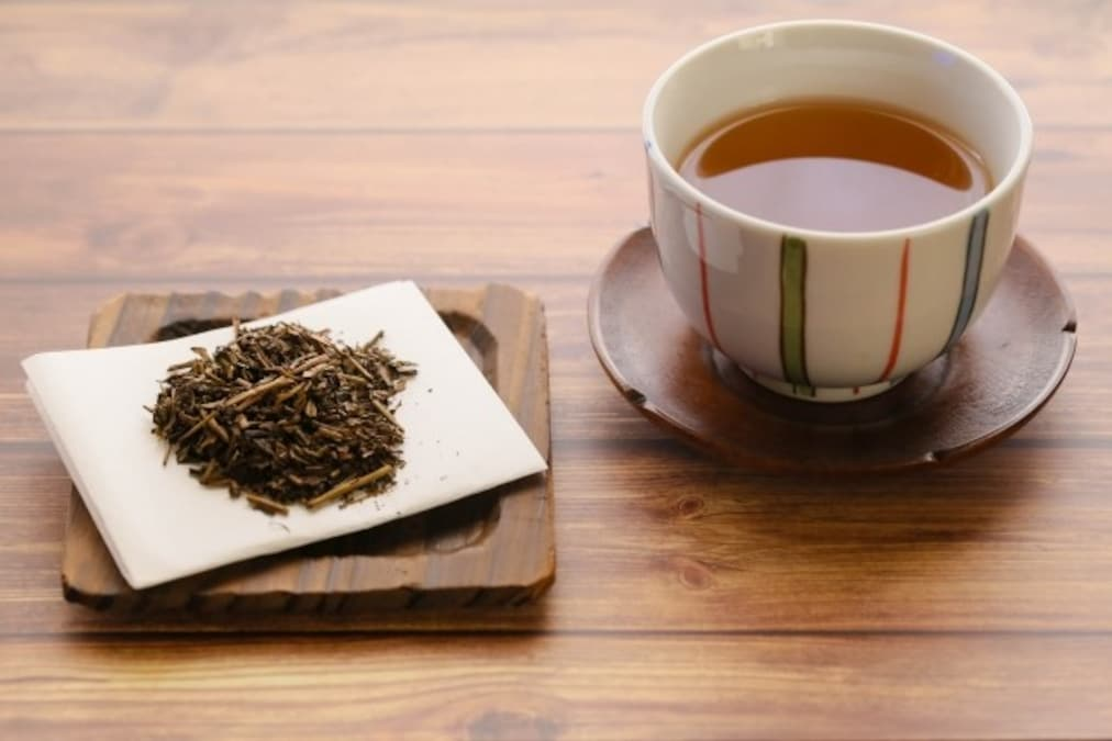 番茶 と ほうじ茶 の 違い