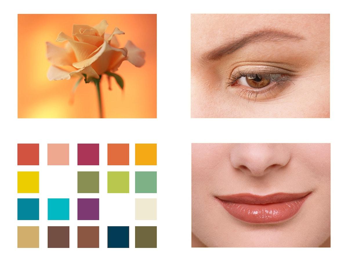 写真 パーソナル カラー 診断