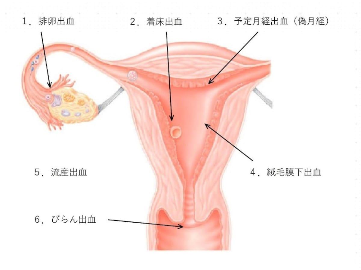 妊娠 オリモノ 生理 前 特徴