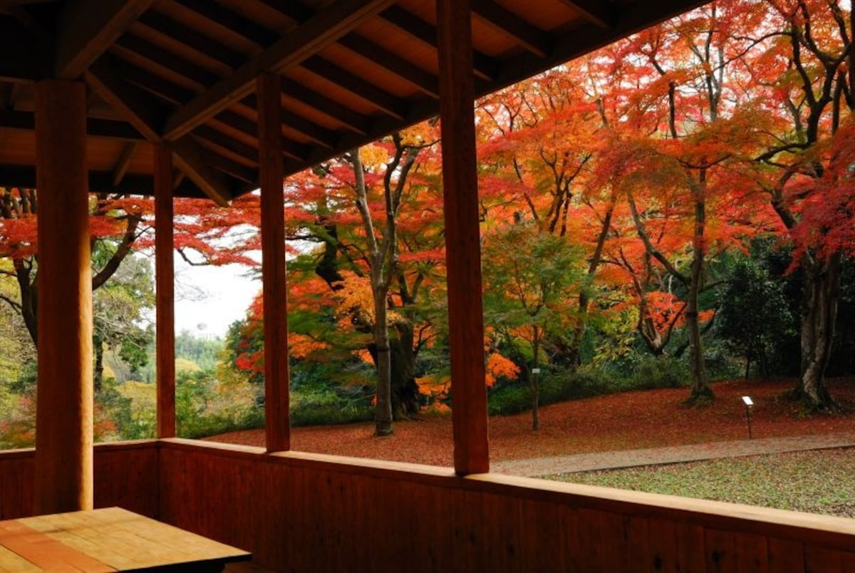 5. Sakura Castle Park (Sakura City)