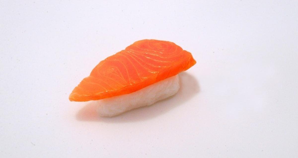1. Salmon Sushi Magnet