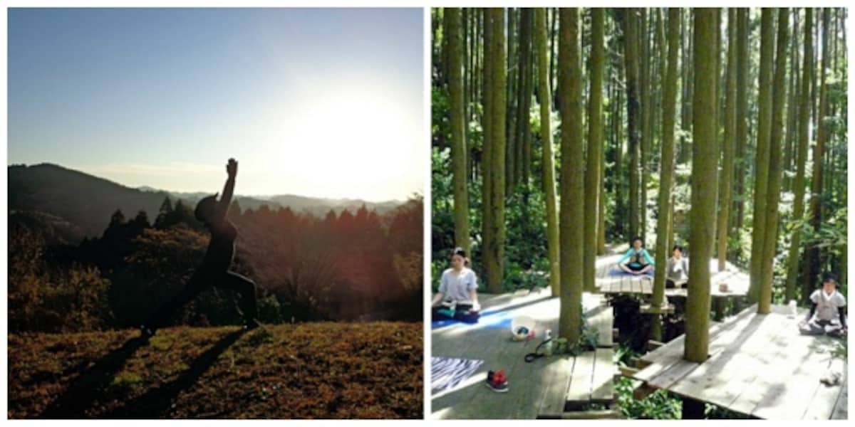 4. Forest Yoga Experience