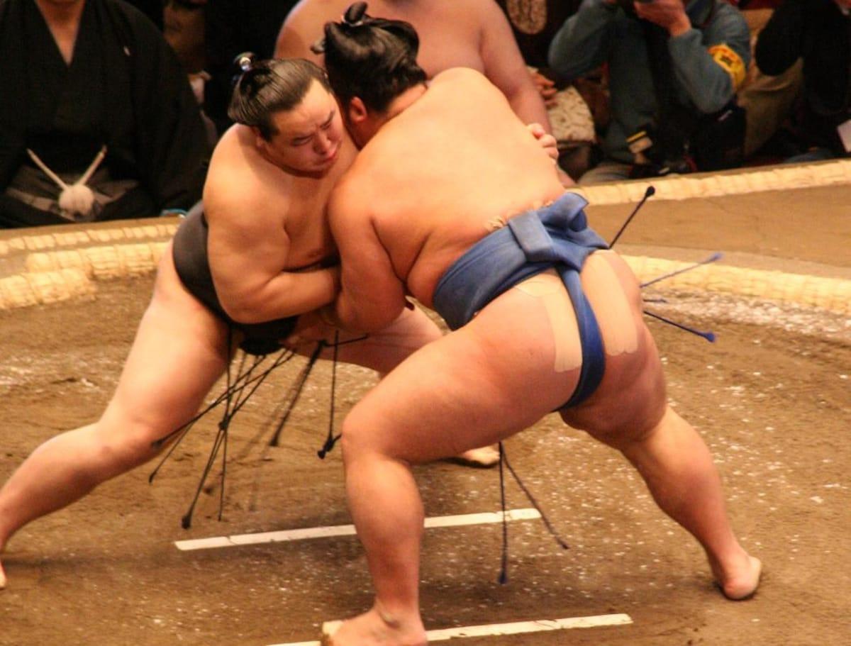 1. Watch Sumo Training
