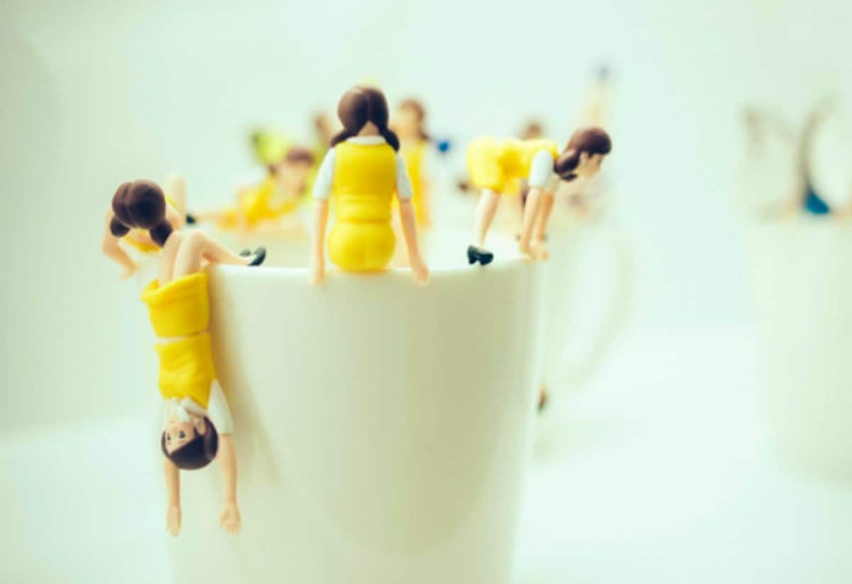 5. Fuchico on the Cup