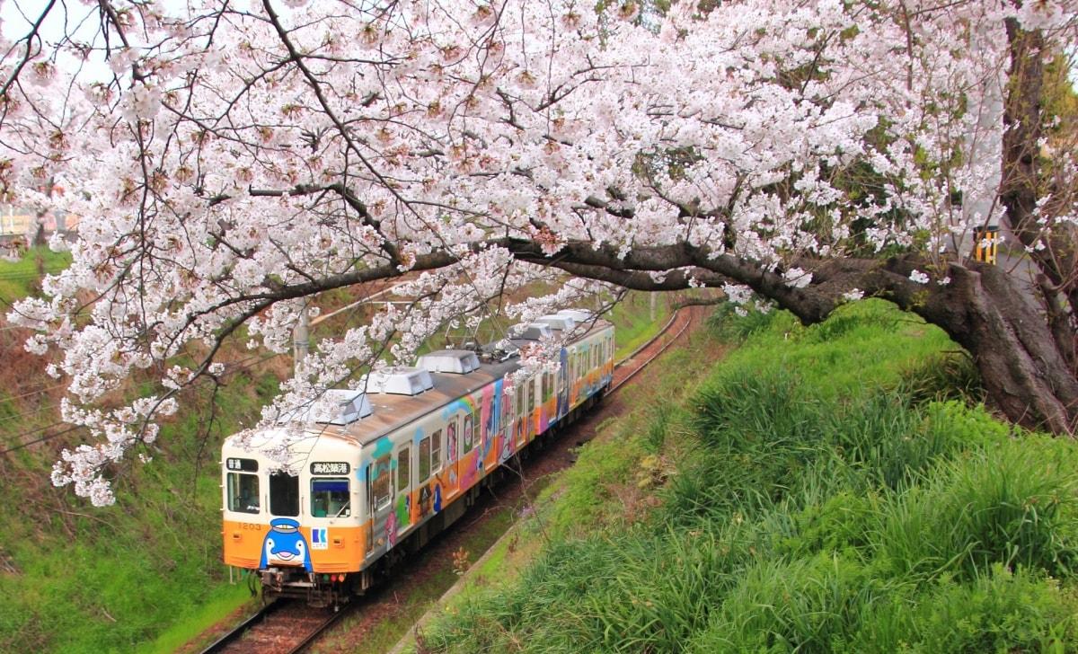 10. Kotoden Kotohira Line (Kagawa)