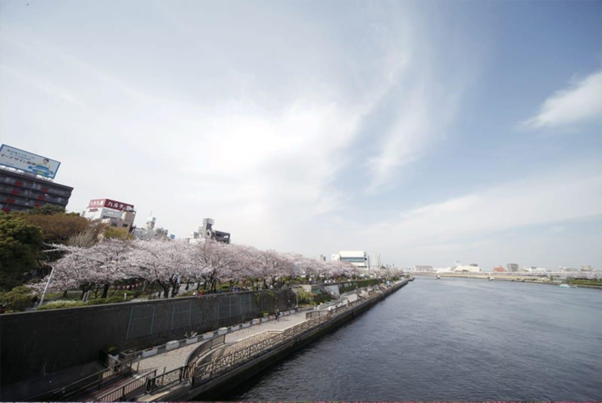 1. Sumida Park (Tokyo)
