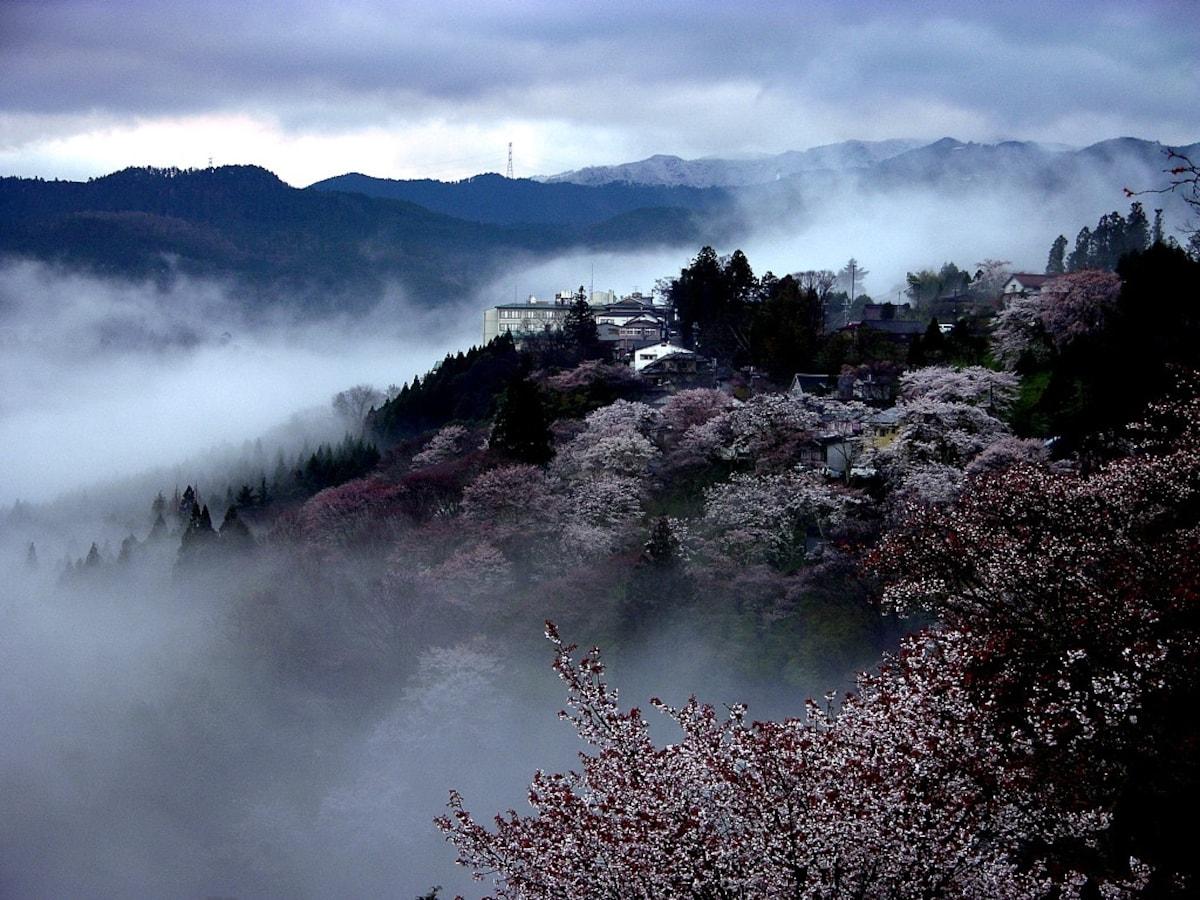 第一名  奈良县吉野山