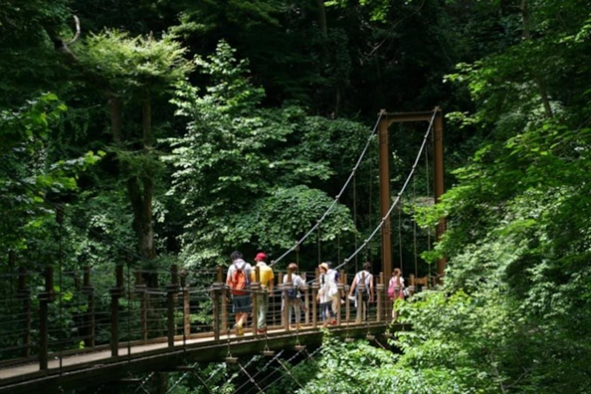 4. Mount Takao